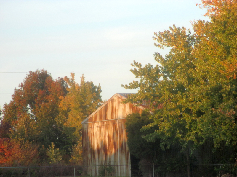 Picture of a Barn in Autumn