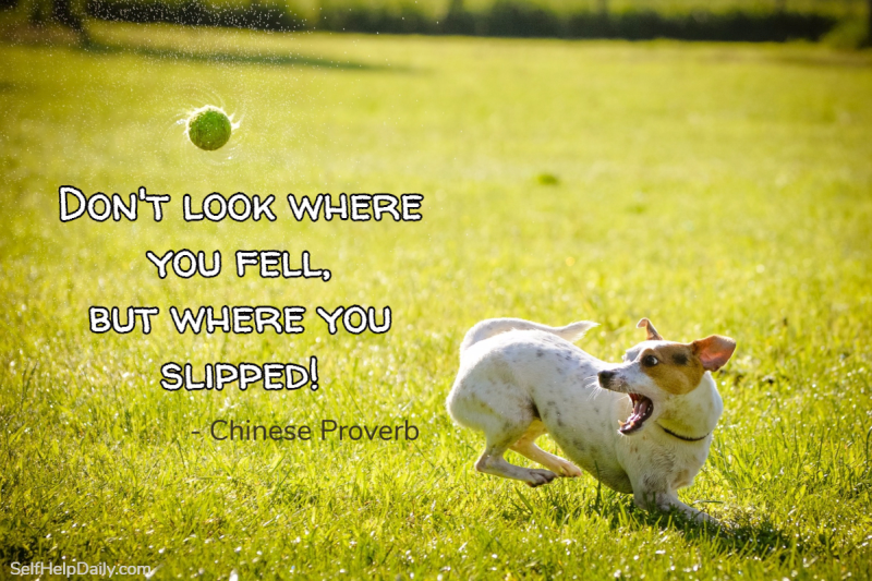 Don't look where you fell but where you slipped.