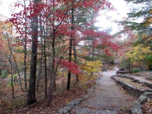 Pine Mountain Trail Behind the Lodge