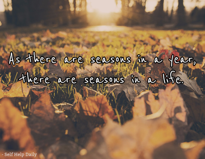 As there are seasons in a year, there are seasons in a life.