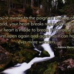Quote About Life and the Beauty of Breaking Hearts