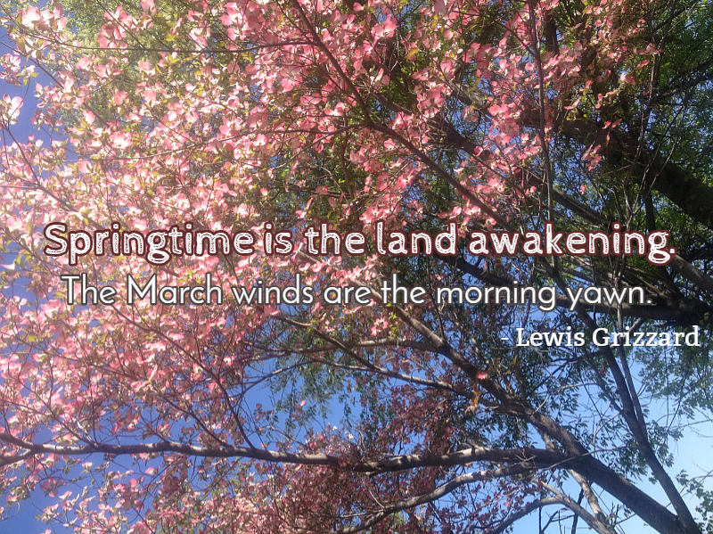 Quote about Spring