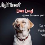 A Light Heart Lives Long. - William Shakespeare
