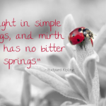 Quote About Simple Things