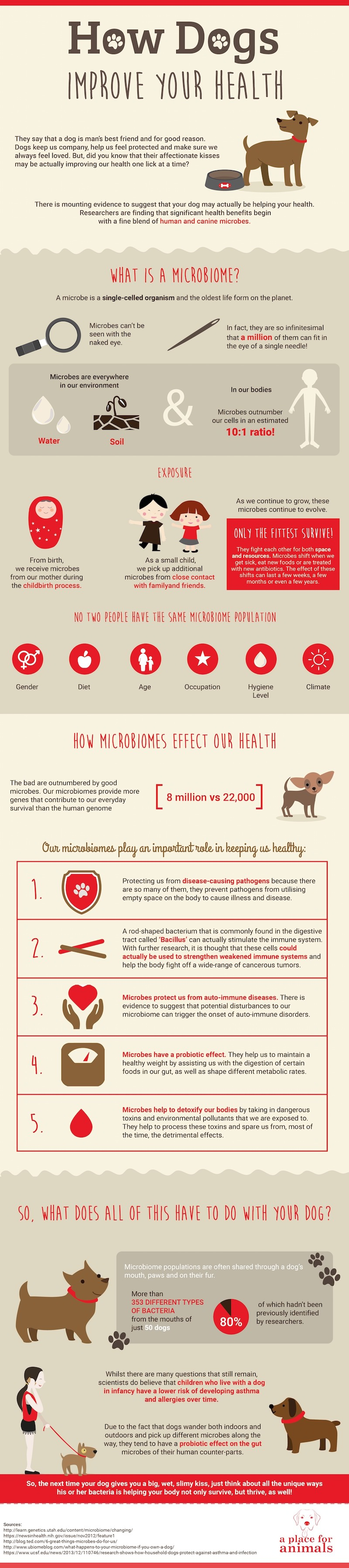 How Dogs Improve Your Health Infographic
