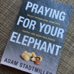 Praying for Your Elephant by Adam Stadtmiller