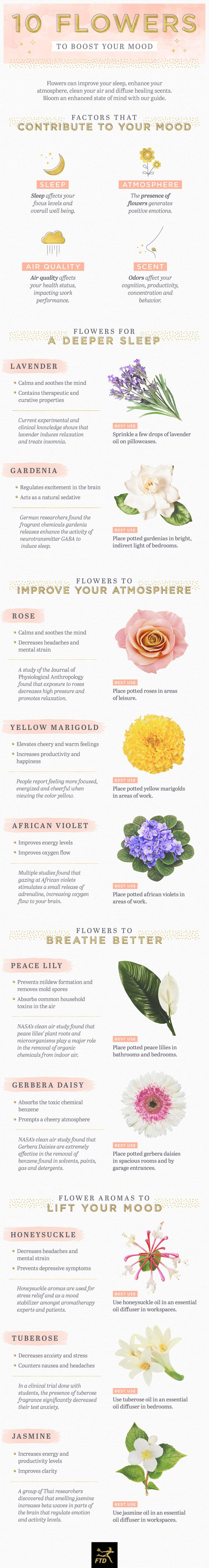 10 Flowers to Boost Your Mood