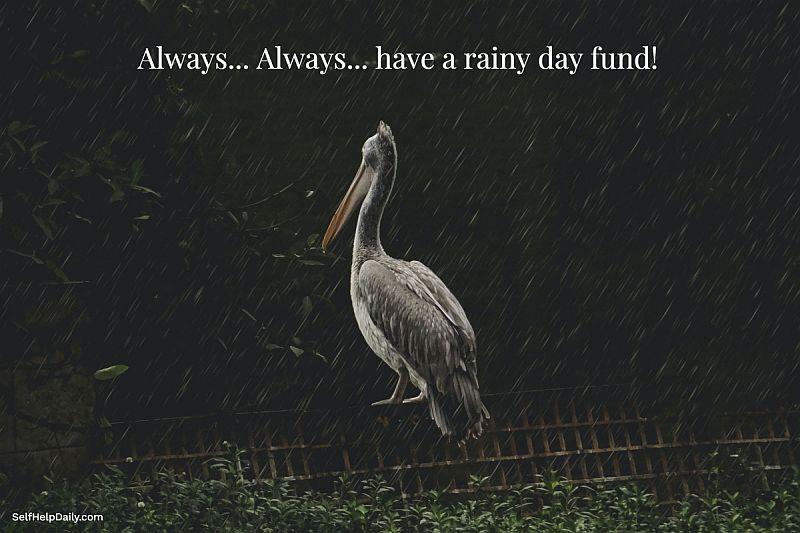 Rainy Day Fund Graphic